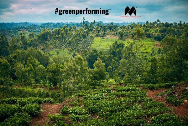 Greenperforming Forest Treedorm